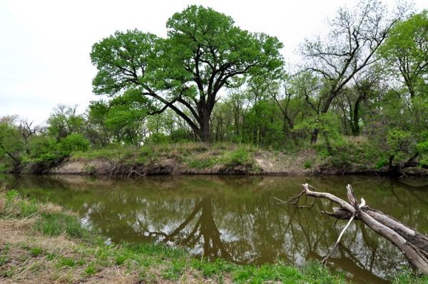Spring on the LIttle Arkansas River