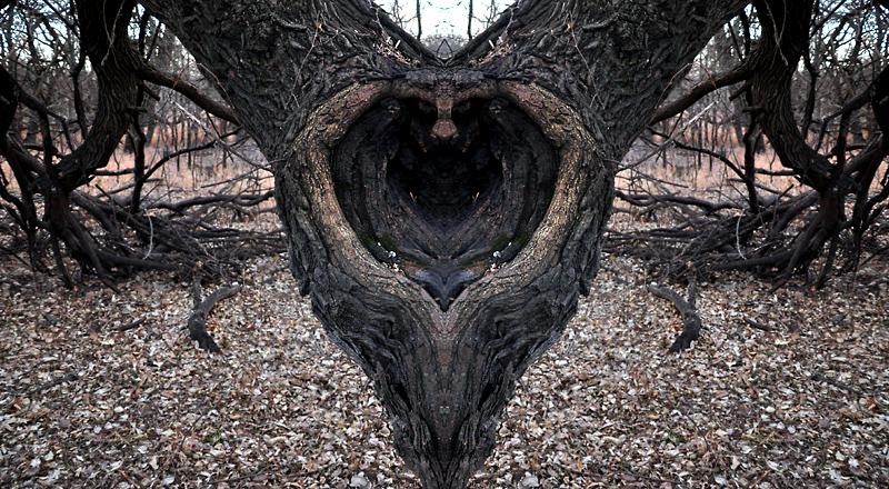 heart like a hole