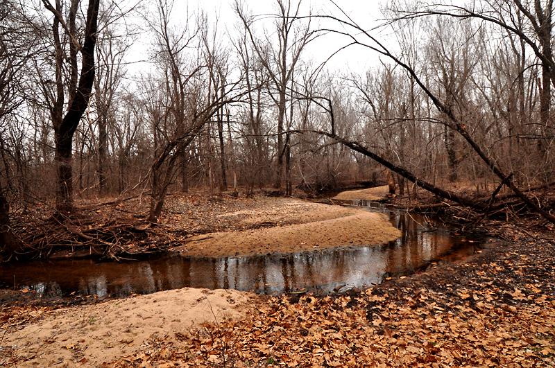 creek near cheney