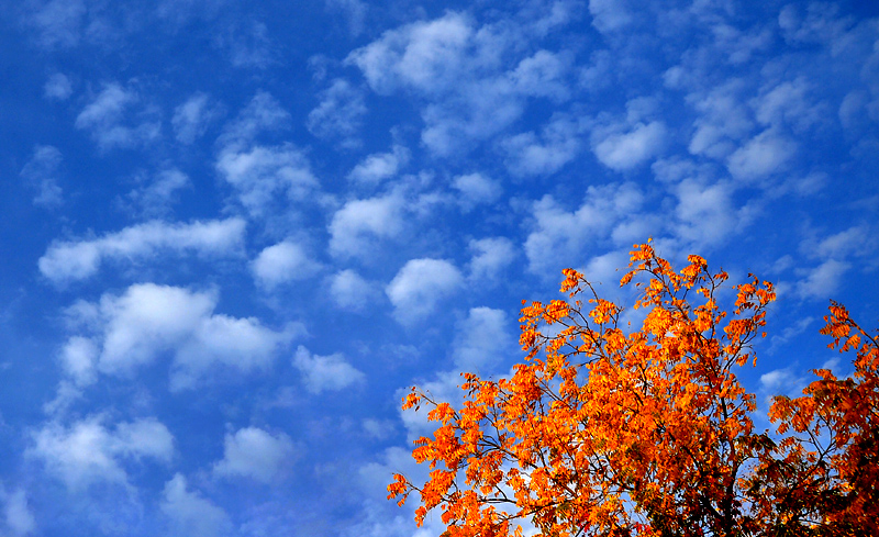 spotty fall clouds